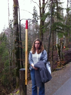 """You must be *this* tall to ride the ride."" No, just kidding – these are actually to alert snow plows to where the edge of the mountain is should the snow banks get this high in the winter! This is on the hike up to the castle."