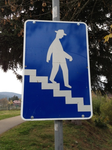 You may only use the stairs if you walk like a creeper?