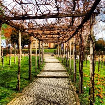 Colombipark, Freiburg im Breisgau