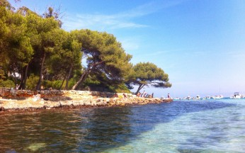 Beach on St. Marguerite, an island off the coast of Cannes.